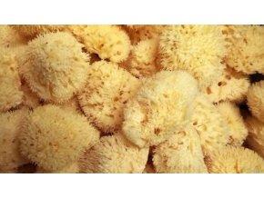Přírodní mořská houba koupelová - Středomořská - HONEYCOMB -Bellini Mineral